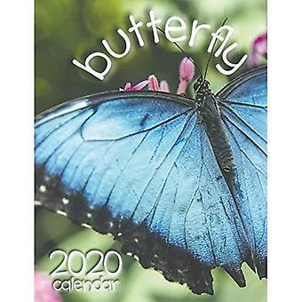 Butterfly 2020 Calendar