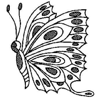 Timbro montato in legno di farfalla