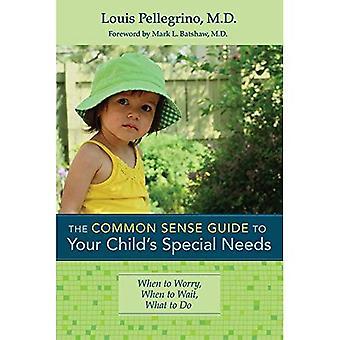 Sunt förnuft Guide till ditt barns särskilda behov: när du ska oroa dig, när du ska vänta, vad göra