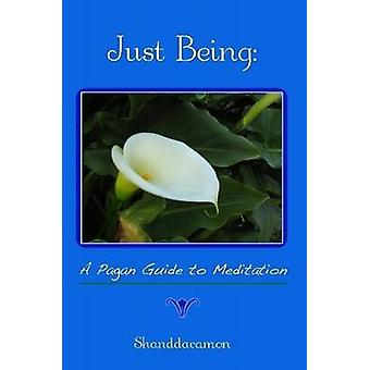 Just Being A Pagan Guide to Meditation by Shanddaramon