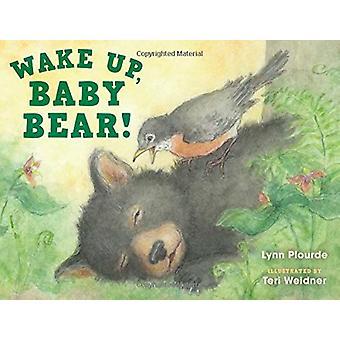 Wake Up - Baby Bär! von Lynn Plourde - 9781608939718 Buch