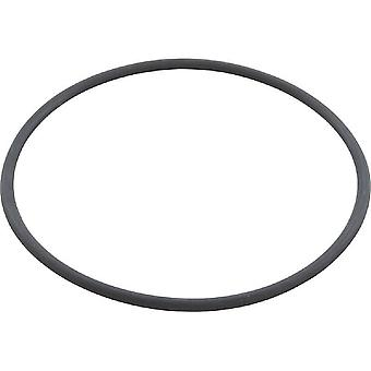 Speck 2901141201 V Body Lid O-Ring