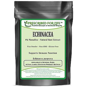 Echinacea - 4% Polyphenols - Natural Herb Extract Powder (Echinacea purpurea)