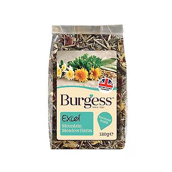 Burgess Excel Mountain Meadow Herb Small Animal Treat (6 Packs)