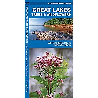 Great Lakes Trees and Wildflowers: An Introduction to Familiar Species