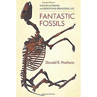 Fantastic Fossils - A Guide to Finding and Identifying Prehistoric Lif
