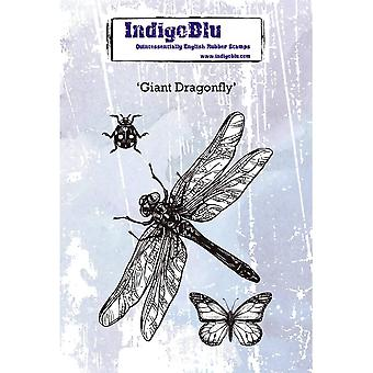 IndigoBlu Giant Dragonfly A6