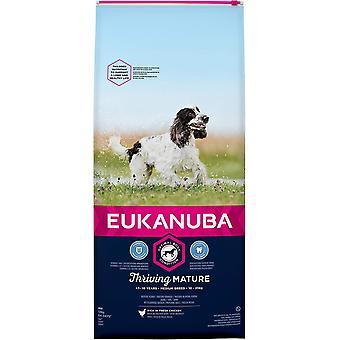 Eukanuba Bloeiende Volwassen Medium Breed Chicken - 12kg
