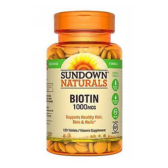 Sundown Naturals Biotin, 1000 mcg, 12 X 120 Tabs