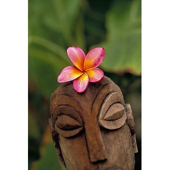 Plumeria Blume auf polynesische Holzstatue schnitzen im freien PosterPrint rosa