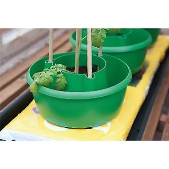 Plant Halos (Set of 3) Green Garden Plastic Watering Grow