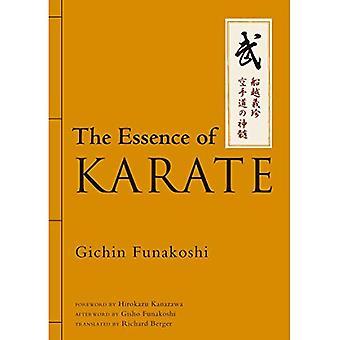 L'essenza del Karate