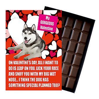 Sibirisk Husky gave til Valentines dag gaver til hund elskere boxed chokolade