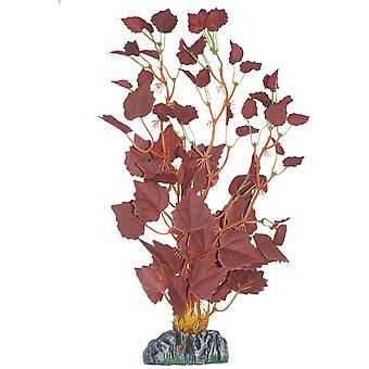 Vesikasvien Higrófila (kala, sisustus, Artificitial kasvit)