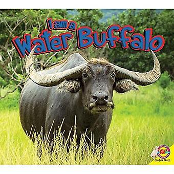 Ik ben een waterbuffel (ik ben)