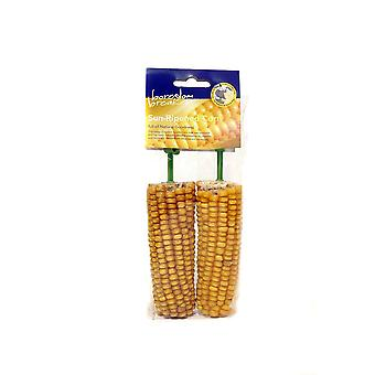 Rosewood Cereal Treat Corn On The Cob (Pack Of 2)