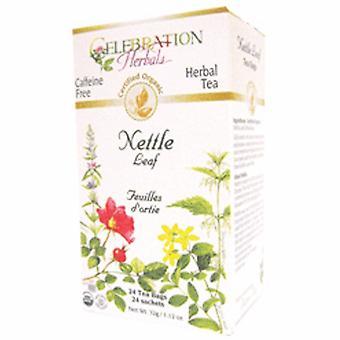 Celebration Herbals Organic Nettle Leaf Tea, 24 Bags