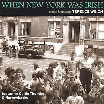 Terence Winch - When New York Was Irish: Songs & Tunes by Terence [CD] USA import
