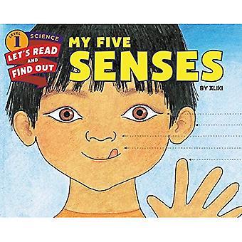 Meus cinco sentidos (ciência vamos-leitura-e-Find-Out 1)