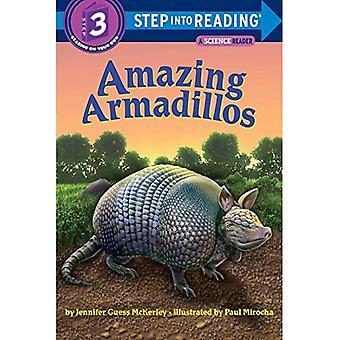 Amazing Armadillos (Step Into Reading - Level 3 - Quality)