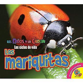 Las Mariquitas (nyckelpigor) (Ninos y la Ciencia: Los ciklosporin de Vida (vetenskap barn: liv C)