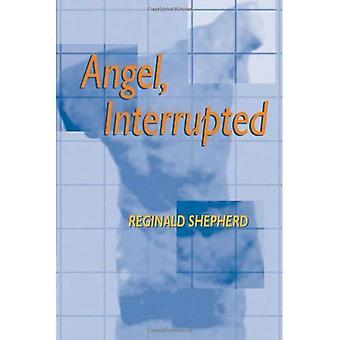 Ángel interrumpe (Pitt serie de poesía)
