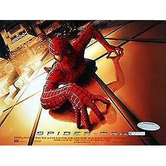 Spiderman Original Cinema Poster