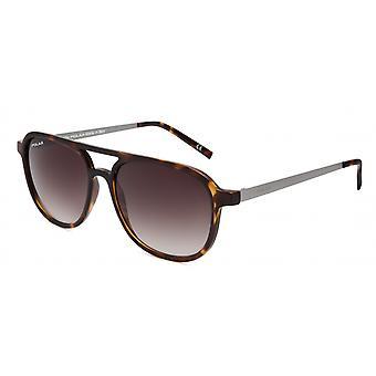 Sonnenbrille Herren  Parker Herren   polarisiert geflammt braun (ppar428)
