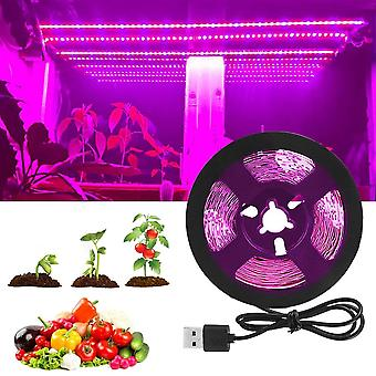 Lamp Full Spectrum Fitolampy For Vegetable Flower Seedling Plant Light Tent