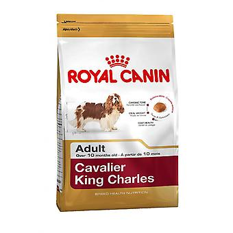 Royal Canin Cavalier King Charles Wholesome and Natural Adult Dry Dog Food 1.5kg