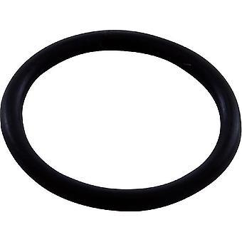 Polaris 48-141 Feed Hose Connector O-Ring
