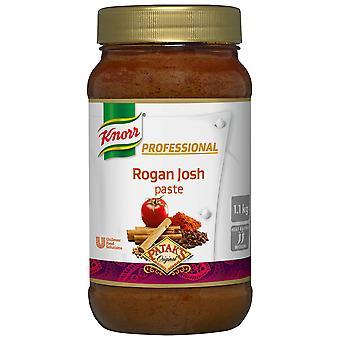 Knorr Patak's Rogan Josh Paste