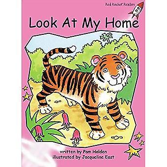 Kijk naar mijn huis: pre reading (rode raket lezers: fictie stel A)