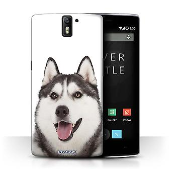 STUFF4 Case/Cover for OnePlus One/Husky/Dog Breeds