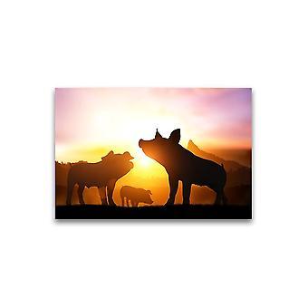 Biggen over mooie zonsondergang Poster -Afbeelding door Shutterstock
