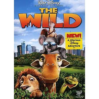 Disney - vilt [DVD] USA import