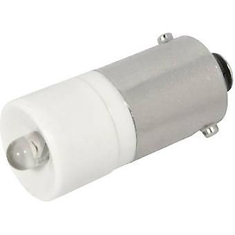 CML LED indicator light BA9S White 12 V DC 700 mcd 186002 BW 3D