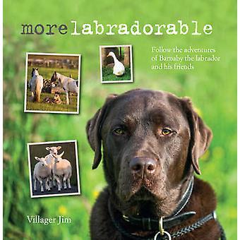 Morelabradorable - Follow the Adventures of Barnaby the Labrador and H