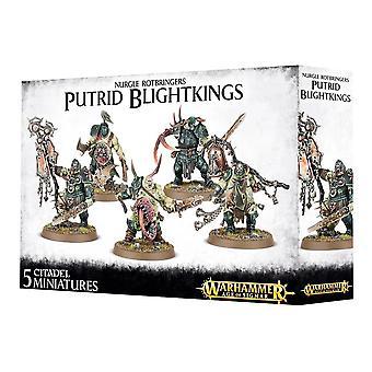 Nurgle Rotbringers Putrid Blightkings, Warhammer 40 000 Age of Sigmar, 40k