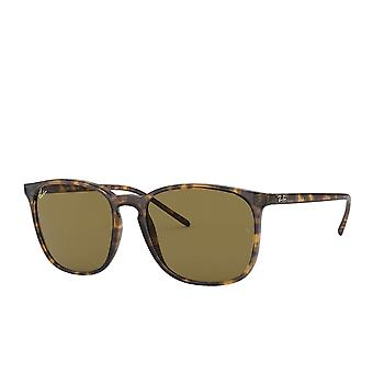 Ray-Ban RB4387 Square Sunglasses - Tortoise