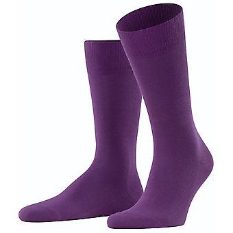 Falke Family Socks - Ultraviolet