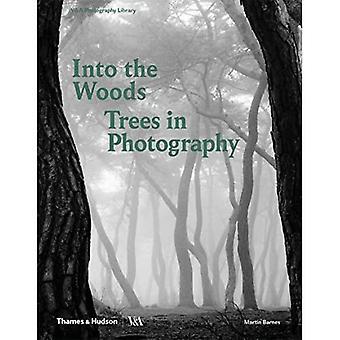 Into the Woods: Bomen en Fotografie