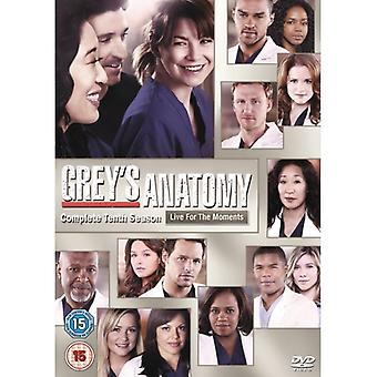 Grey's Anatomy - Season 10 DVD