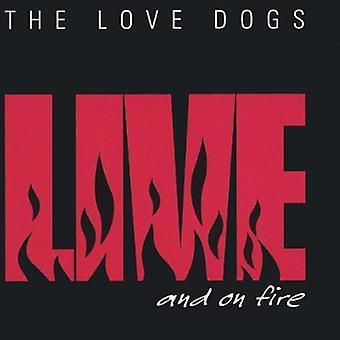 Elsker hunder - Live & på brann [DVD] USA importerer