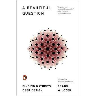 Uma bela questão: Encontrar o projeto profundo da natureza