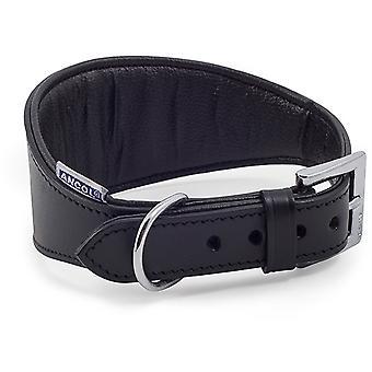 Ancol Heritage Pelle Padded Greyhound Collar - Nero - 35-48cm (Dimensione 4-5)