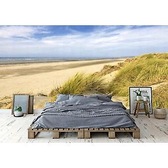 Sfondo Mural Dunes Touquet-Parigi Spiaggia