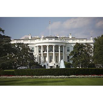 Белый дом США Вашингтон Округ Колумбия Плакат Печать