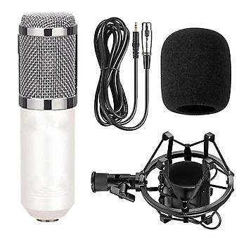 Handheld Microphone - Studio Condenser Mic For Ktv, Radio And Braod Casting