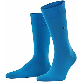 Burlington Lord Socks - Poolside Blue